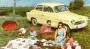 Škoda octavia sedan piknik
